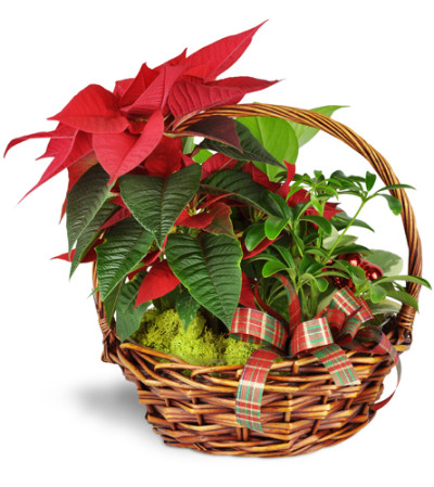 Holiday Basket of Cheer™