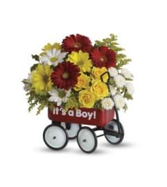 Baby Boy's Welcome Wagon