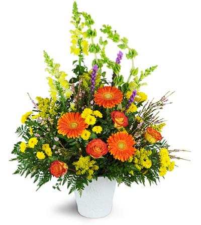 Flowers Calgary Ab Florist
