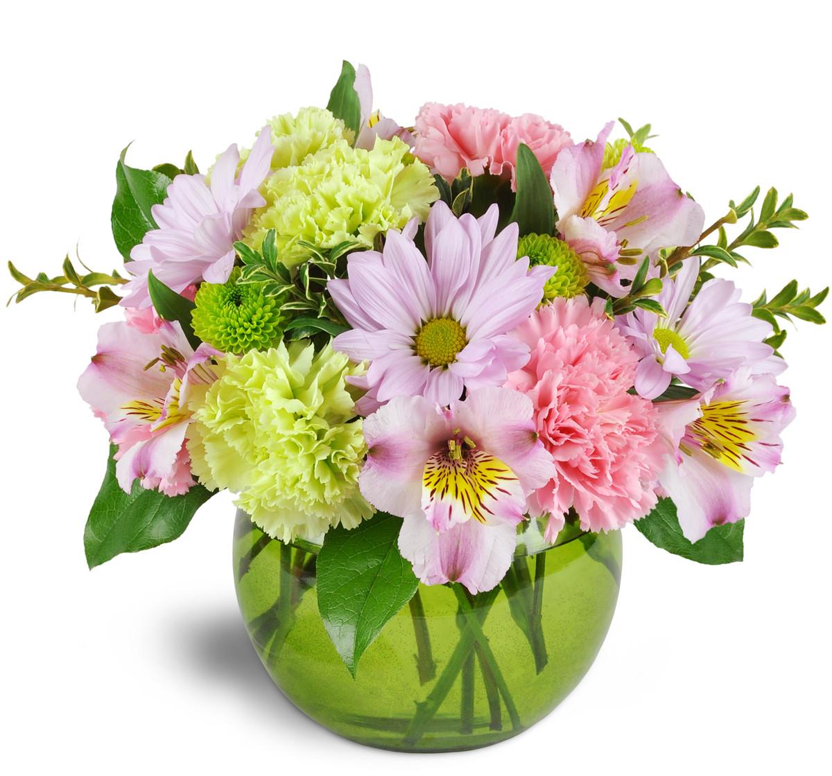 Flowers Maquoketa Ia Florist
