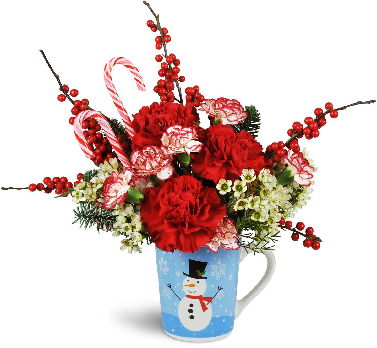 Baby Gift Baskets Kitchener : Holiday hug in a mug kitchener on florist