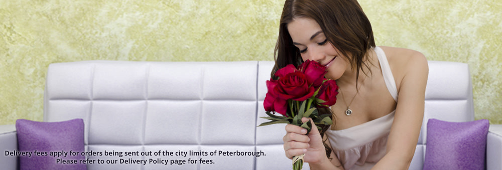 Peterborough Designer's Choice