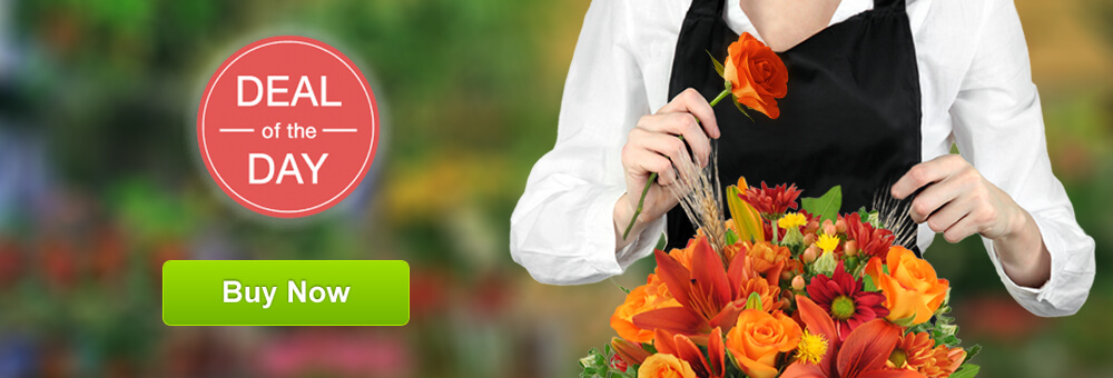Charlotte Florist Deal of the Day
