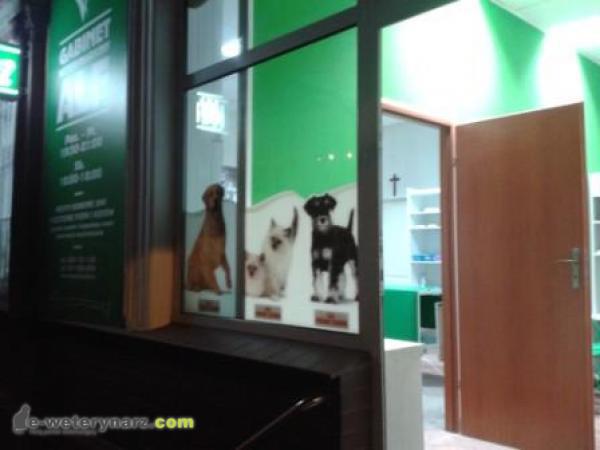 Gabinet Weterynaryjny Alf i Stryżenie psów