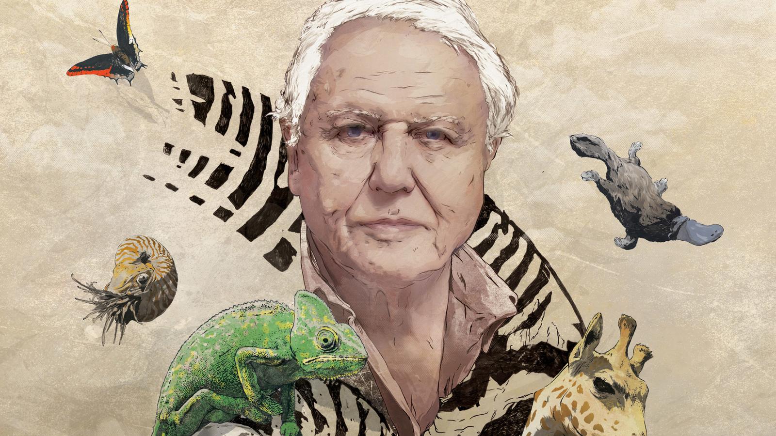 RT - David Attenborough's Natural Curiosities | Eden's ...