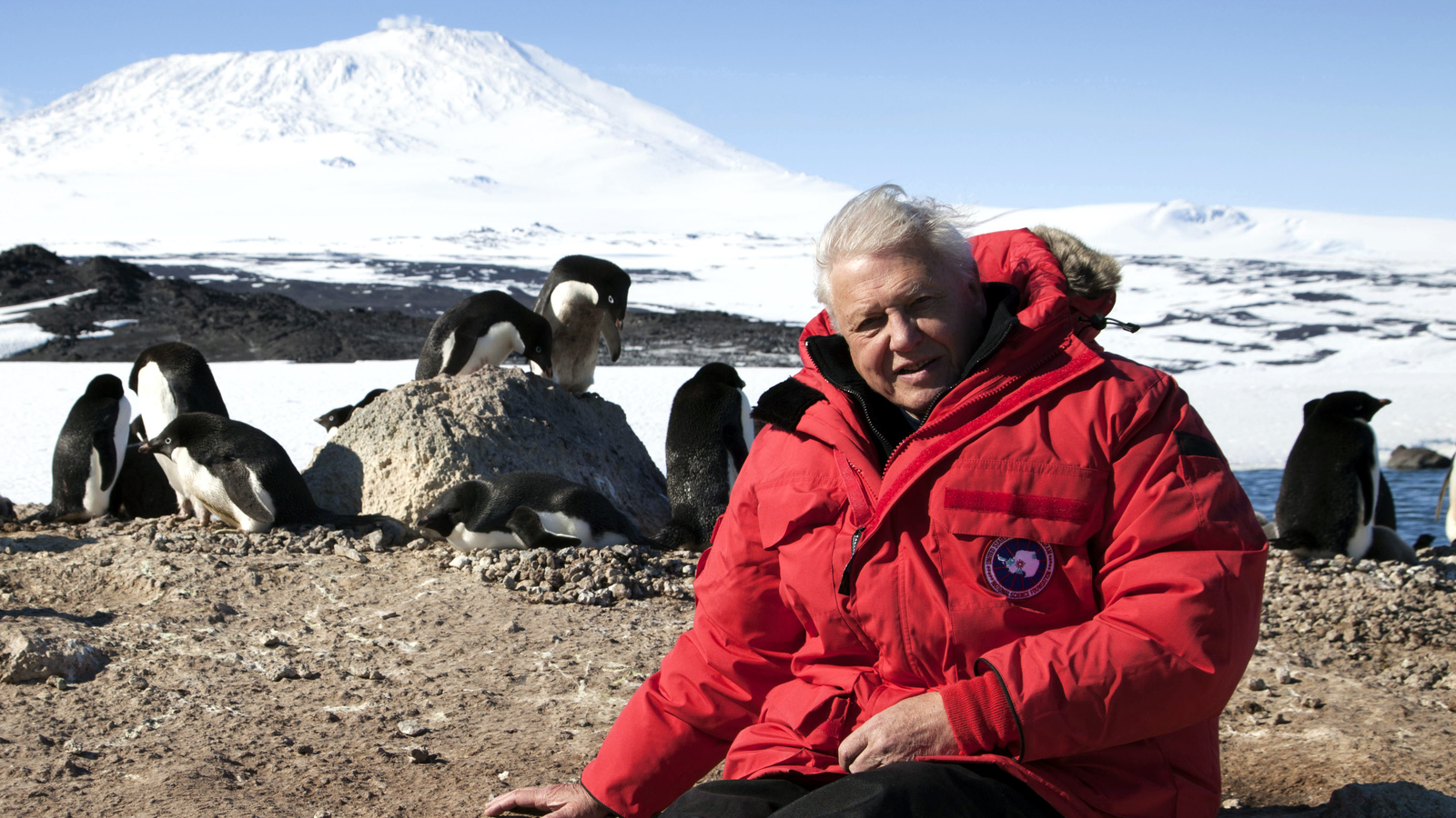 planet earth 2 tv guide