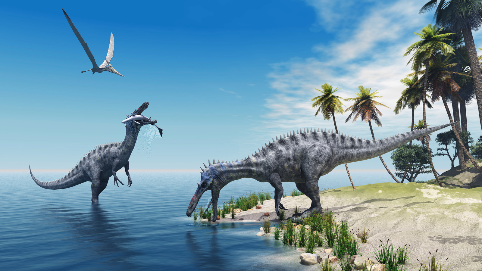 life during the jurassic period During the late triassic epoch, dinosaurs grew no bigger than today's largest  mammals however, during the jurassic period, which began.