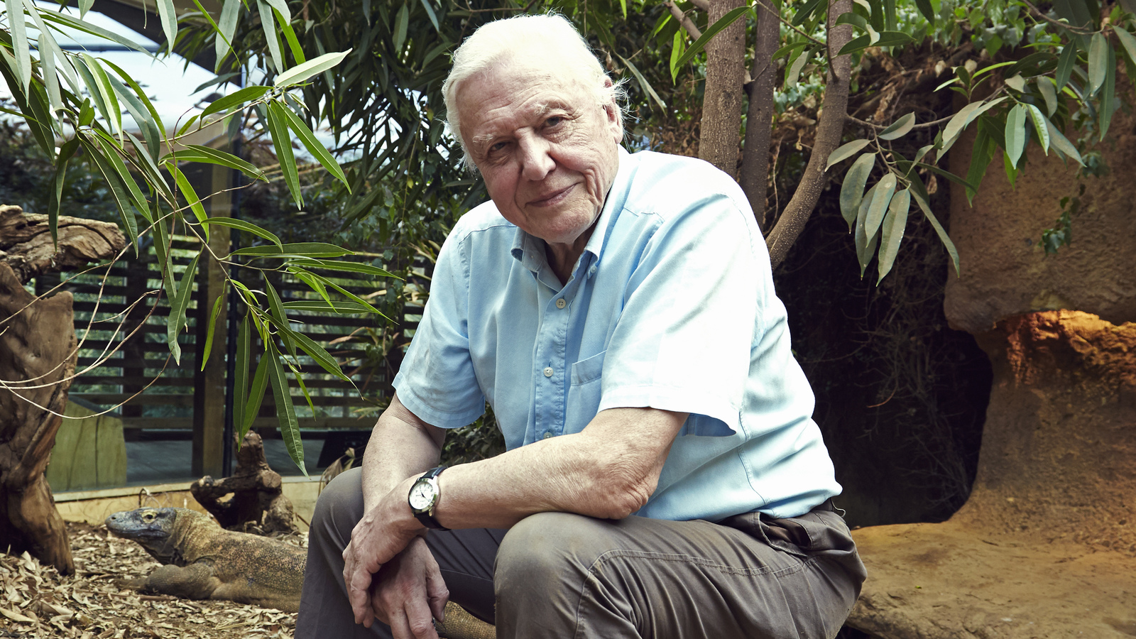 In Photos David Attenborough 39 S Natural Curiosities