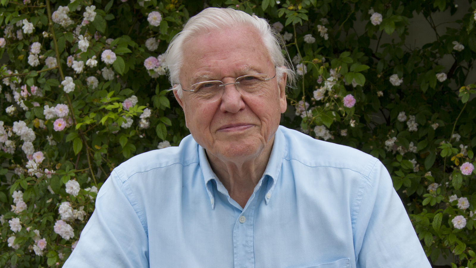 Sir David Attenborough Quiz Sir David Attenborough