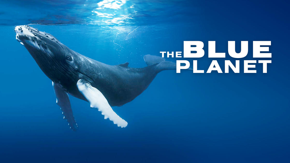 watch the blue planet online
