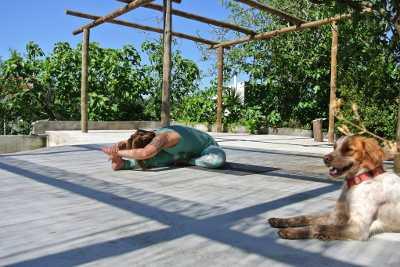 buddharetreats_yoga_shala