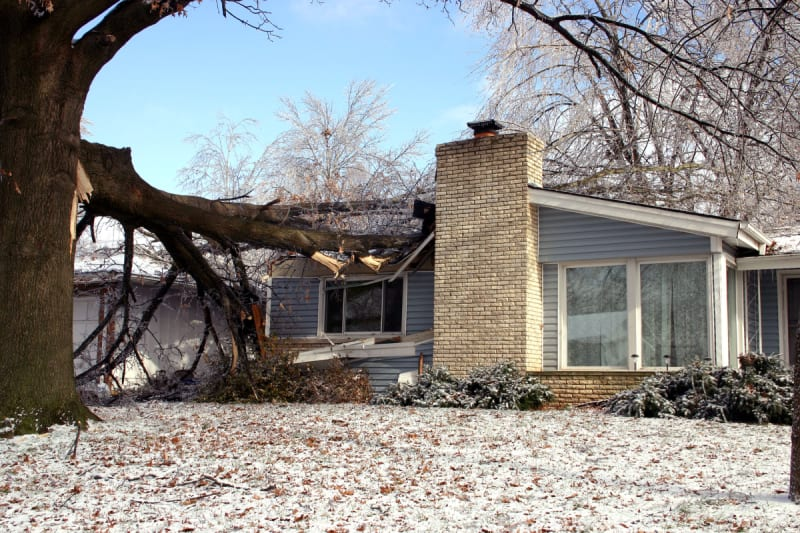 As Winter Sets in, 62% of Homeowners with Damage from Last ...