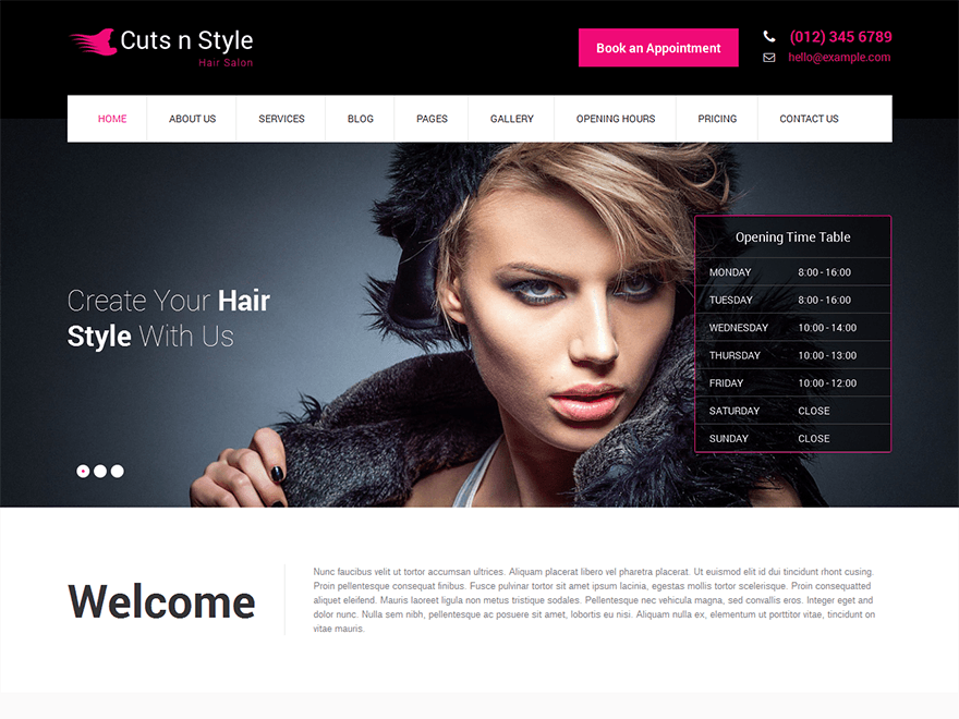 photography wordpress themes SKT