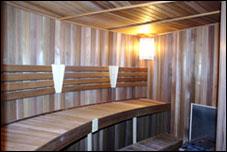 Skin cleansing sauna