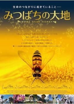 みつばちの大地(2012)