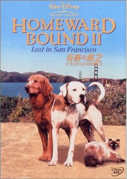 奇跡の旅2 サンフランシスコの大冒険