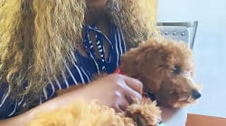 Genevieve Nnaji shows off her cute dogs