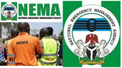 NEMA donates relief materials to Katsina flood victims