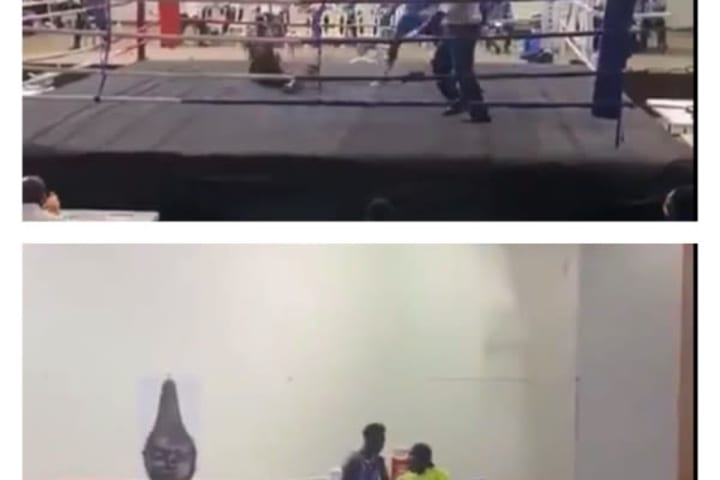 Nigerian boxer Adegbola knocks out opponent in 15 seconds [Video]