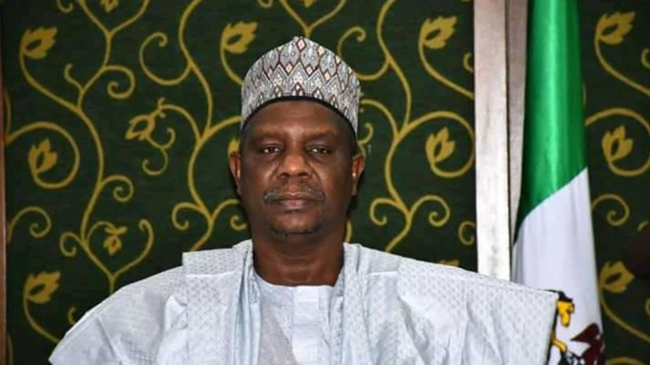 Bauchi Council Elections: We have silenced critics, says deputy-governor
