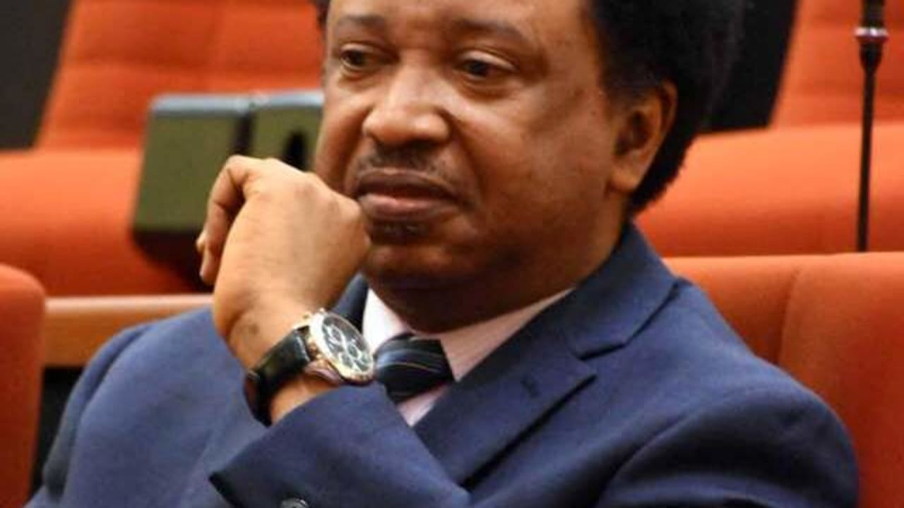 "Shehu Sani sends warning over ""Exercise Crocodile Smile"""