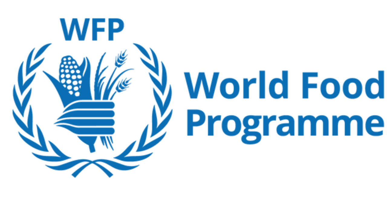 WFP begins distribution of food, cash in Abuja