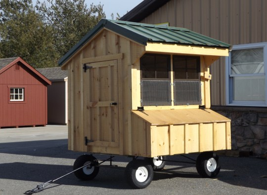 Chicken Coop Buckskin