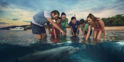 Feeding Bottlenose Dolphin