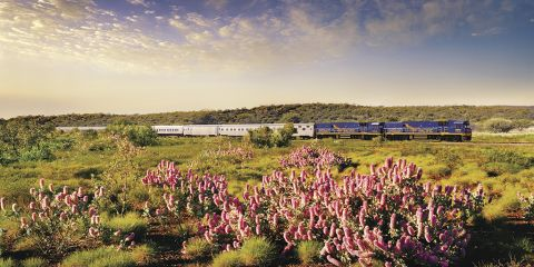 The Indian Pacific copyright Great Southern Rail (2)