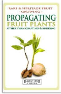 Propagating Fruit Plants