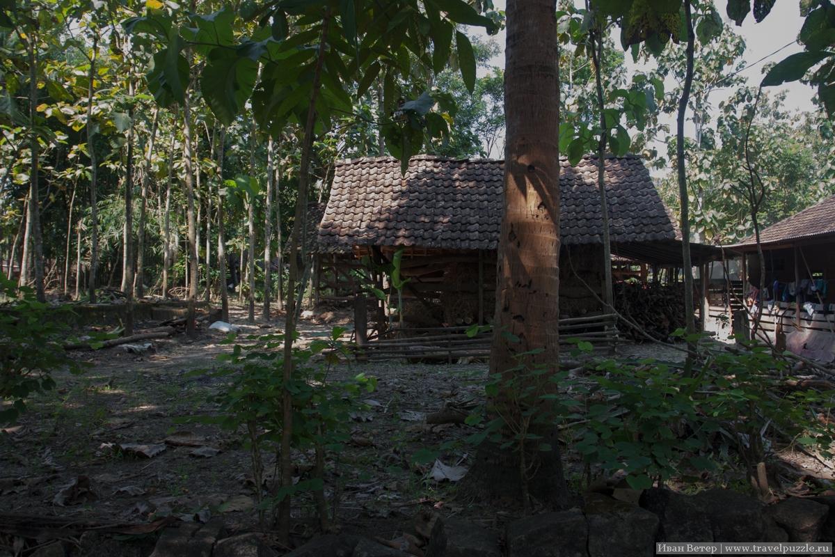 Деревня на Яве.
