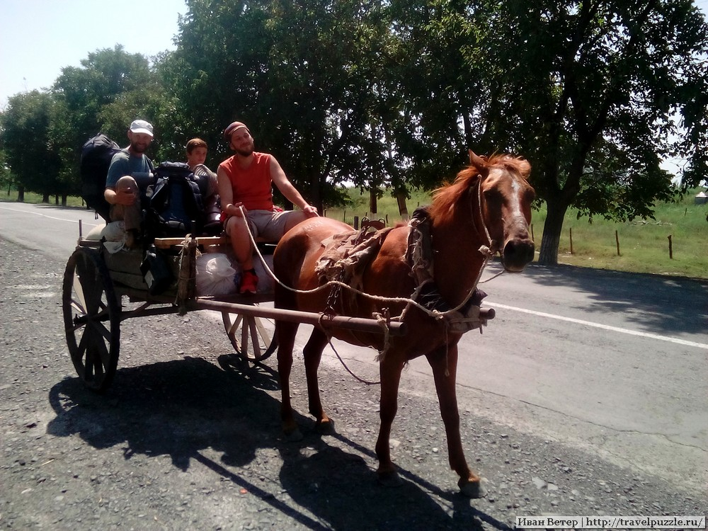 Автостоп на лошади