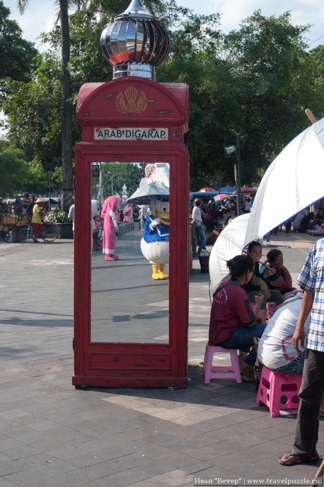 Дональд Дак и английская телефоннаяы будка