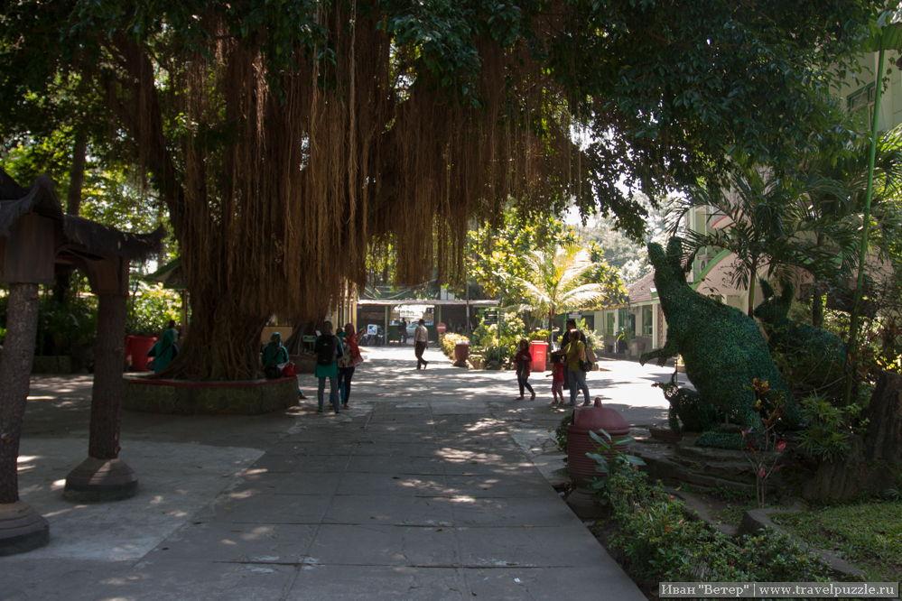 Парк в Джокьякарте