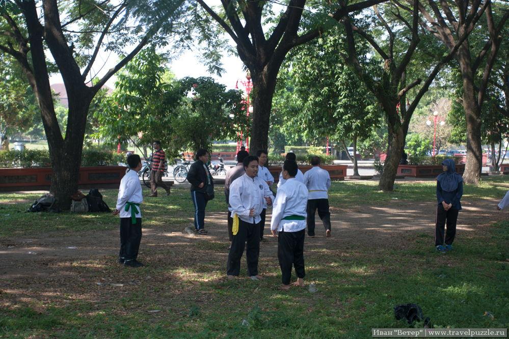 Секция единоборств в парке у университета