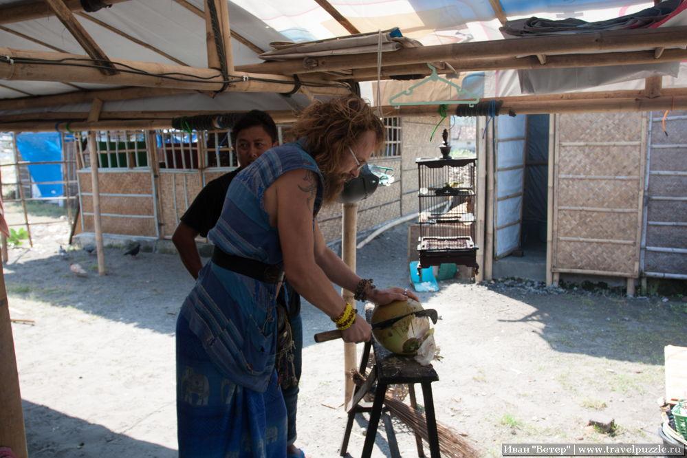 Как открыть кокос при помощи мачете