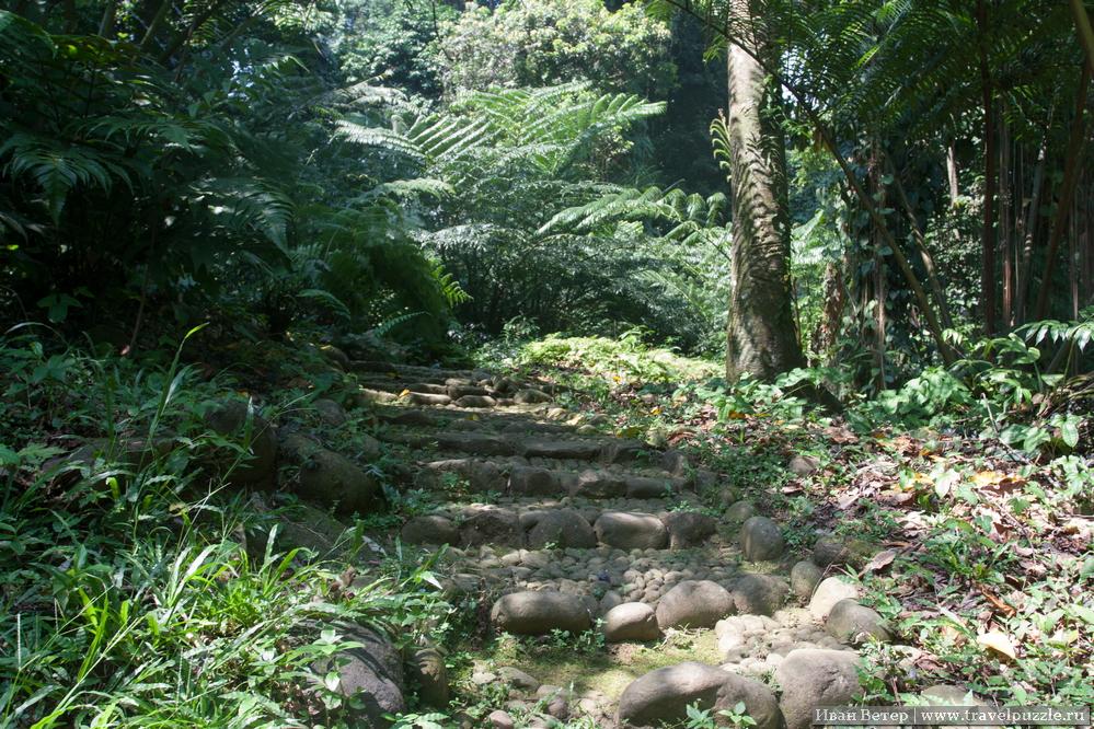 Уютные дорожки в лесу довольно безлюдны. Люди сконцентрированы больше у прудов, что недалеко от резиденции президента.
