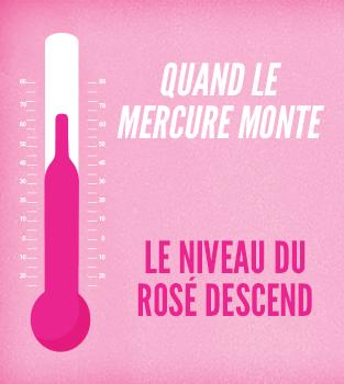 Rosé Wine Republik