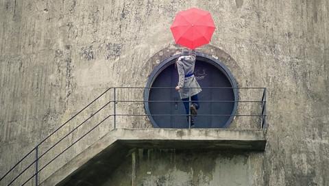 Netzberühmt / Ein roter Regenschirm mit über 45.000 Followern auf Instagram