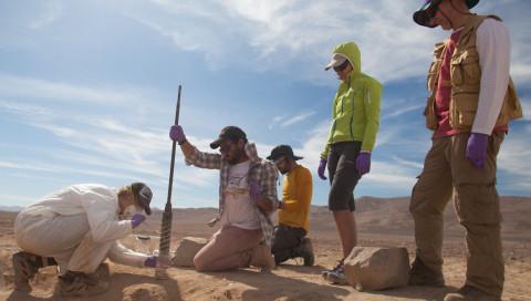 Die NASA sucht in der Atacamawüste nach Leben