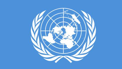 Die IT-Chefin der UN fordert digitale Blauhelme gegen Cyberkriminalität