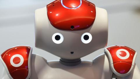 Elon Musks OpenAI arbeitet an einem Haushaltsroboter