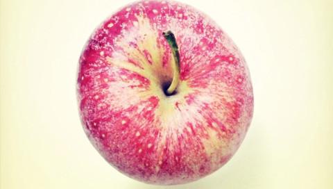 Streit um gentechnisch verändertes Obst auf dem US-Markt