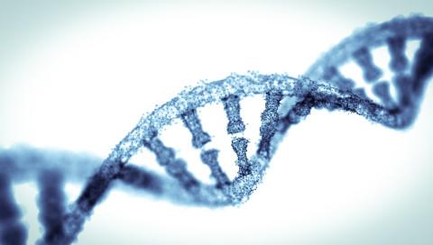 Google veröffentlicht eine Künstliche Intelligenz zur DNA-Sequenzierung