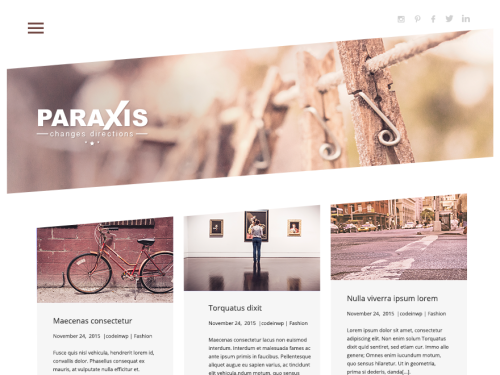 Paraxis Lite Fashion Responsive WordPress Theme - WordPress Theme