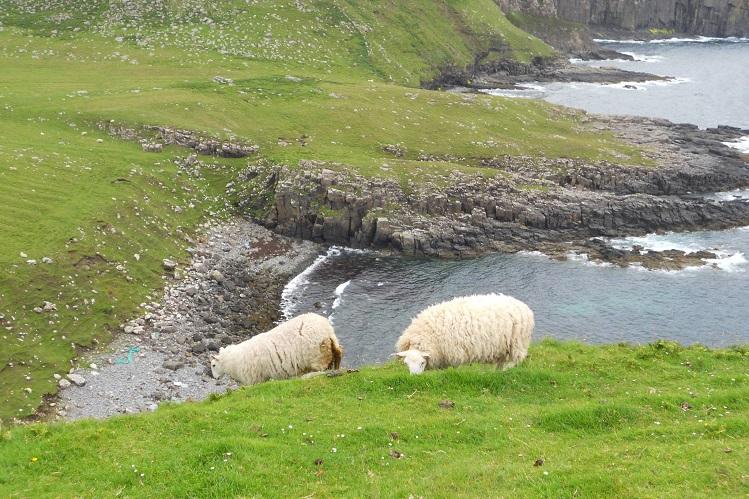 Vista del paisaje cerca de Neist Point, en Skye. Fotografía de Mireia Company