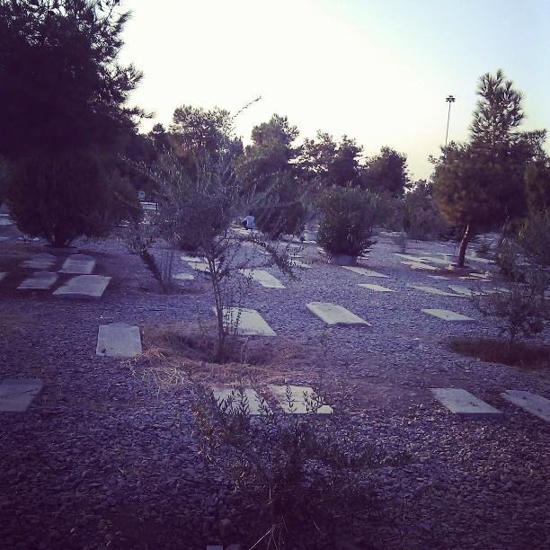 امشب میان نقبره ها راه می روم/ باید که شیوه ی زیستنم را عوض کنم
