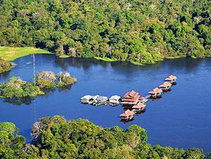 Brazil Vacation Package - Amazon Wildlife - Uacari Research Jungle Lodge (5N)