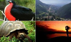 Ecuador Travel Package - Quito and the Galapagos Islands (5N)