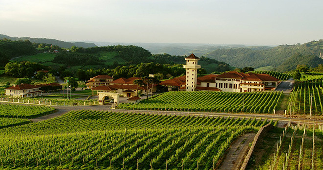 Miolo Vineyards - Gramado - Brazil